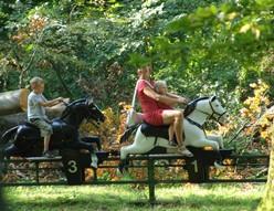 chevaux-parc-merveilleux