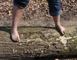sentier-pieds-nus