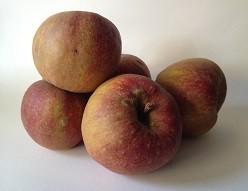 pommes-boscop
