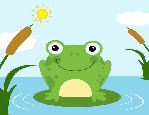 grenouilles-tetards
