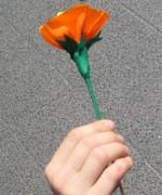 fleur-papier7