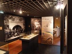 fonds-de-gras-expo-fossiles