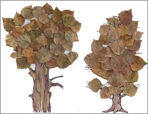 arbres-3
