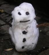 neige-sacha